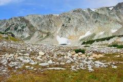 Paesaggio alpino nelle montagne dell'arco della medicina del Wyoming immagini stock