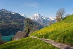 Paesaggio alpino in primavera Fotografia Stock