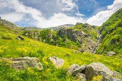 Paesaggio alpino in primavera e l'estate Fotografia Stock Libera da Diritti