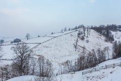 Paesaggio alpino rurale di inverno con il recinto ed il percorso Immagine Stock Libera da Diritti