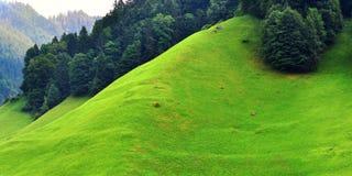 Paesaggio alpino sbalorditivo nel cantone Uri, Svizzera Fotografia Stock