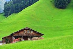 Paesaggio alpino sbalorditivo nel cantone Uri, Svizzera Immagine Stock Libera da Diritti