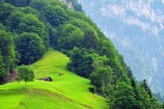Paesaggio alpino sbalorditivo nel cantone Uri, Svizzera Immagini Stock Libere da Diritti