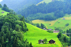 Paesaggio alpino sbalorditivo nel cantone Uri, Svizzera Fotografia Stock Libera da Diritti