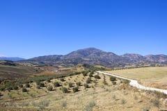Paesaggio andaluso asciutto con le montagne ed il terreno coltivabile Fotografia Stock