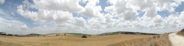 Paesaggio andaluso rurale su Cloudscape drammatico Immagine Stock Libera da Diritti