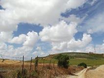 Paesaggio andaluso rurale su Cloudscape drammatico Fotografia Stock Libera da Diritti