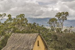 Paesaggio andino Azuay Ecuador Fotografia Stock