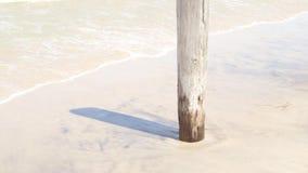 Paesaggio anteriore della spiaggia di estate del lago stock footage