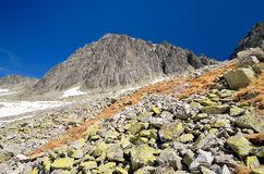 Paesaggio in anticipo della montagna della molla Fotografia Stock
