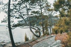 Paesaggio approssimativo in America settentrionale fotografia stock libera da diritti