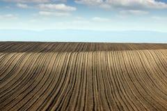 Paesaggio arato del terreno coltivabile del campo Fotografie Stock
