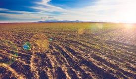 Paesaggio arato di tramonto dei campi Immagine Stock Libera da Diritti