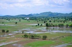 Paesaggio archivato riso visto da sopra; kanchanaburi Tailandia Immagini Stock