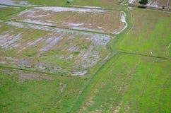 Paesaggio archivato riso visto da sopra; kanchanaburi Tailandia Fotografie Stock