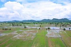 Paesaggio archivato riso visto da sopra; kanchanaburi Tailandia Fotografie Stock Libere da Diritti