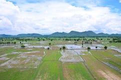 Paesaggio archivato riso visto da sopra; kanchanaburi Tailandia Fotografia Stock