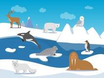 Paesaggio artico con differenti animali polari illustrazione di stock