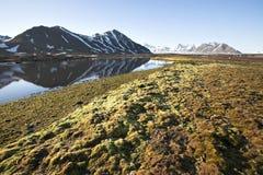 Paesaggio artico di estate - montagne e tundra fotografie stock