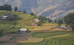 Paesaggio asiatico del villaggio in una zona rurale con la risaia Fotografia Stock