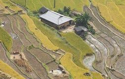 Paesaggio asiatico del villaggio in una zona rurale con la risaia Immagine Stock