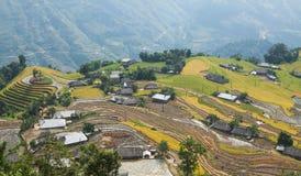 Paesaggio asiatico del villaggio in una zona rurale con la risaia Fotografia Stock Libera da Diritti