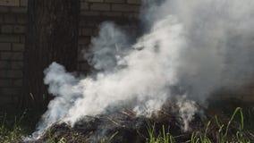 Paesaggio australiano bruciante di incendio di arbusti in Territorio del Nord nell'ustione controllata di periodo di siccità archivi video