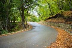 Paesaggio autunnale della regione di Kakheti Fotografie Stock Libere da Diritti