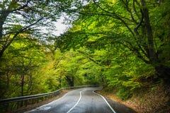 Paesaggio autunnale della regione di Kakheti Immagini Stock