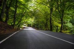 Paesaggio autunnale della regione di Kakheti Fotografia Stock