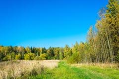 Paesaggio in autunno in anticipo Fotografie Stock