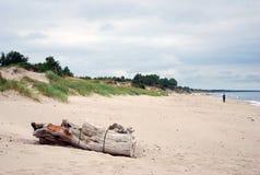 Paesaggio baltico della natura del sirene dello sputo Fotografia Stock