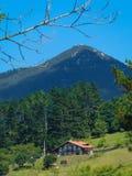 Paesaggio basco tipico nella riserva di biosfera di Urdaibai, casa fotografia stock
