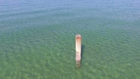 Paesaggio basso del mare con l'ondulazione video d archivio