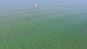 Paesaggio basso del mare con l'ondulazione stock footage