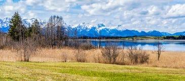 Paesaggio bavarese della campagna delle alpi Immagine Stock