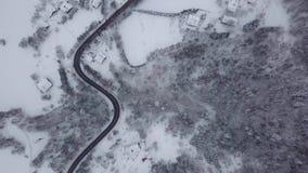 Paesaggio bianco del legno e della strada stock footage