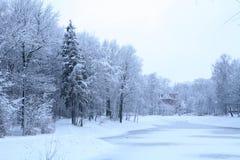 Paesaggio blu di inverno fotografia stock libera da diritti