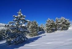 Paesaggio C di inverno Fotografia Stock Libera da Diritti