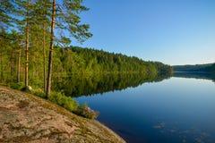 Paesaggio calmo del lago nella mattina di estate Fotografia Stock