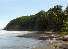 Paesaggio caraibico della spiaggia Fotografie Stock