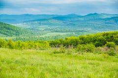 Paesaggio in Carpathians in primavera Fotografia Stock Libera da Diritti