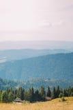 Paesaggio carpatico di Forest Hills del pino con poche costruzioni su priorità alta Fotografie Stock Libere da Diritti