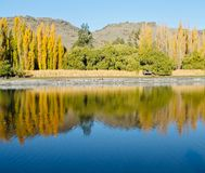 Paesaggio centrale di Otago di estate immagine stock