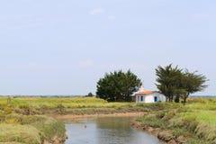 Paesaggio Charente-marittimo con il canale Immagine Stock