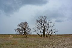 Paesaggio che precede una tempesta Fotografia Stock
