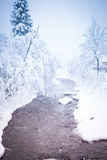Paesaggio Colourful di inverno Fotografie Stock Libere da Diritti
