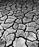 Paesaggio colpito dalla siccità Fotografia Stock