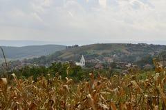 Paesaggio con cereale e la chiesa Immagini Stock