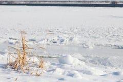 Paesaggio con erba asciutta sulla sponda del fiume Immagine Stock